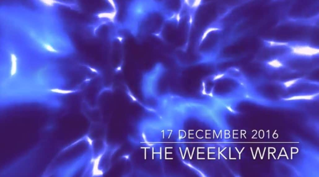 Weekly Wrap 6