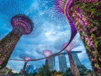 colt singapore