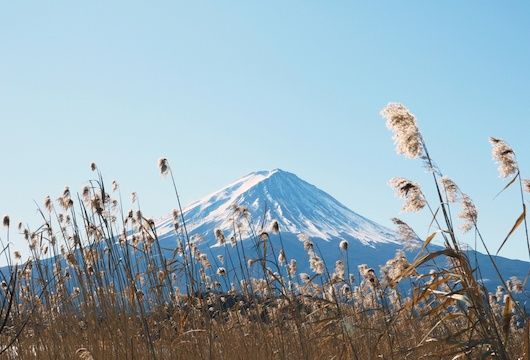 Openet expands presence in Japan with new hires
