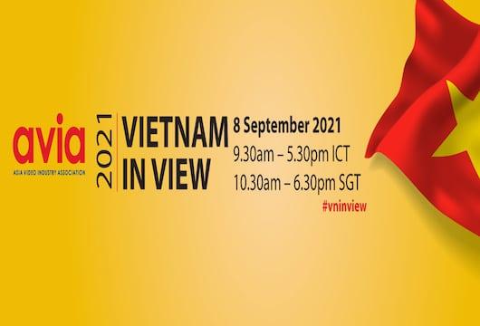 Vietnam in View