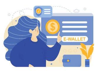 e-wallet fintechs